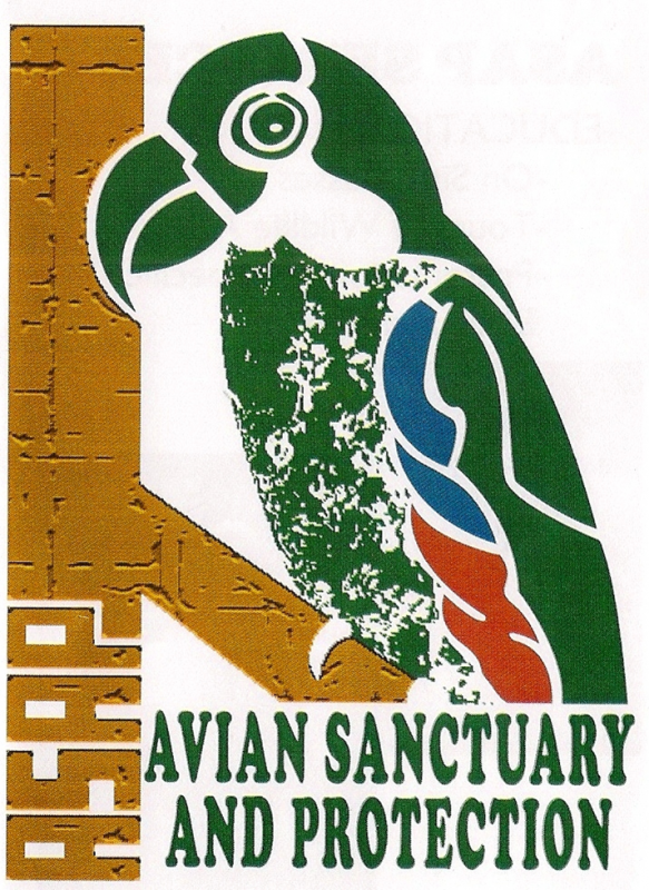 Avian Sanctuary and Protection